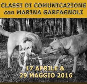 classi-comunicazione-per-cani-Arezzo-2016